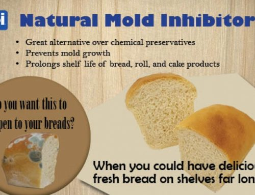 Natural Mold Inhibitor